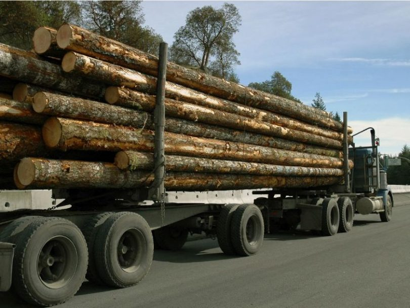 The companies have all cited the loss of timber supply from the beetle epidemic in the closures.