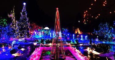 Vandusen Festival of Lights Christmas (Photo credit: Daily Hive)