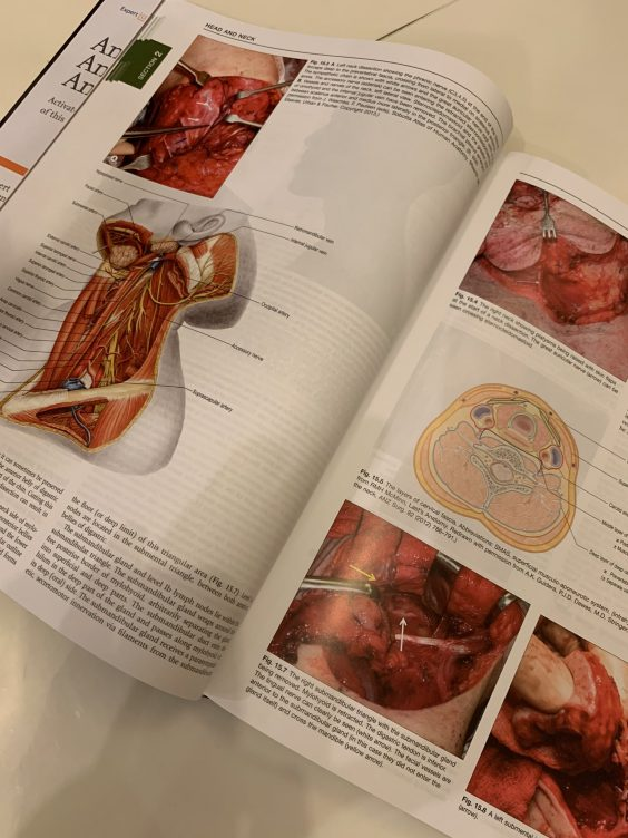 Open pages of Gray's Surgical Anatomy text showing a few photos and illustrations of surgery.
