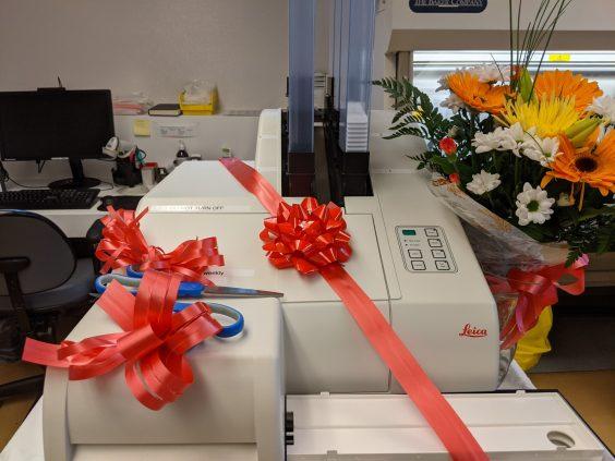 illustrates new digital printer